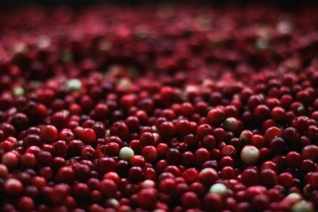 Cranberries for Diabetes