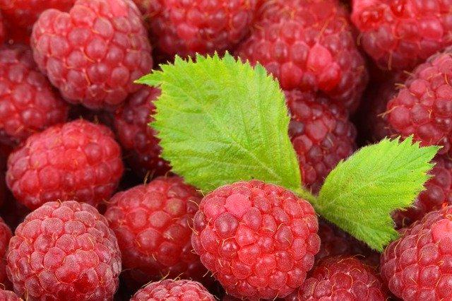 Raspberries for Diabetes