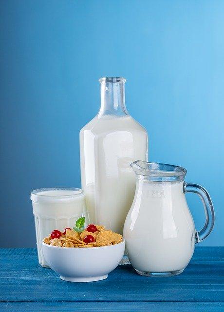 Which milk is best for diabetics