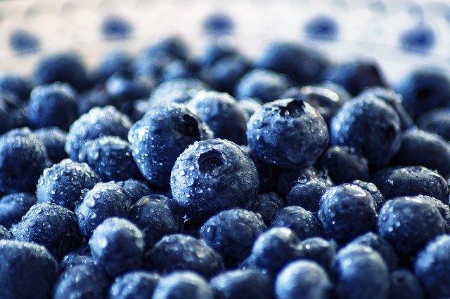 blueberries for diabetes