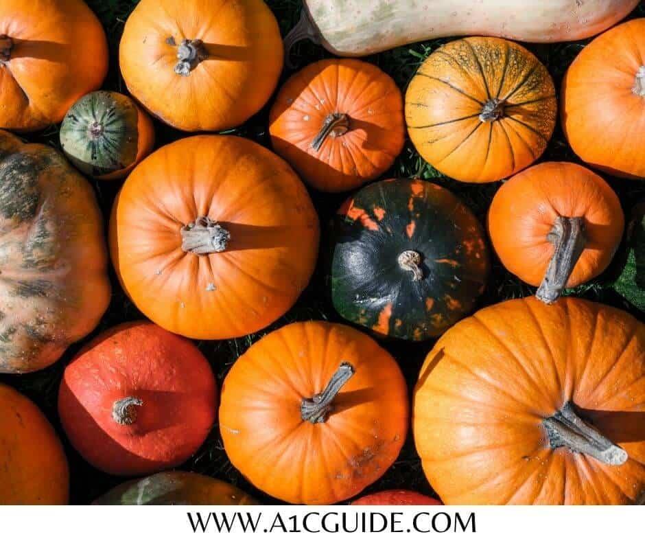 can diabetics eat pumpkin