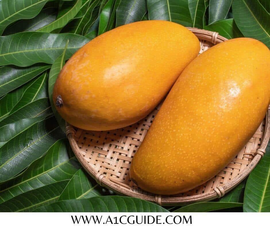 mango leaves for diabetes research mango leaves powder for diabetes