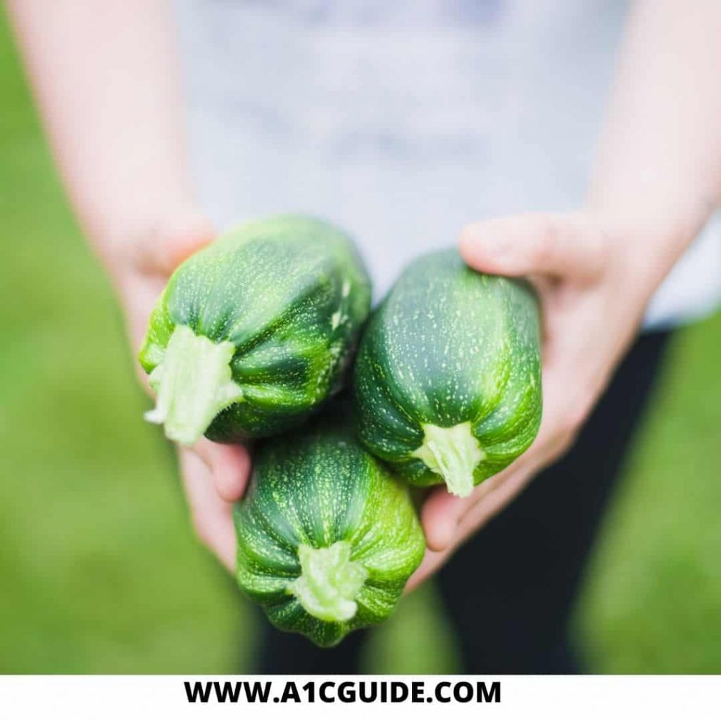 can diabetics eat zucchini